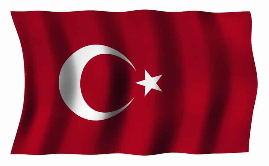 チューリップはトルコが原産国についてのトリビア