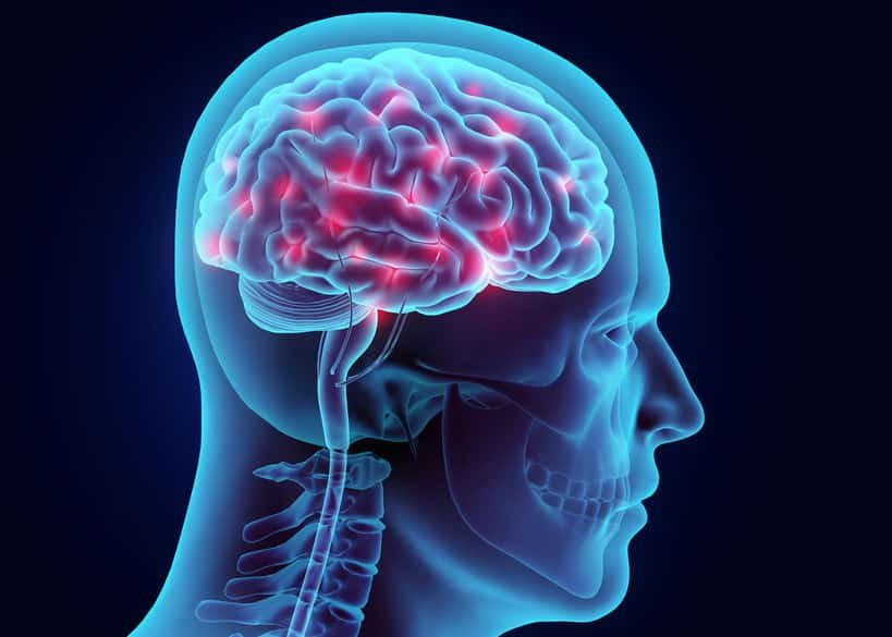 人間は脳細胞を死なせるほどアルコールを吸収できないというトリビア
