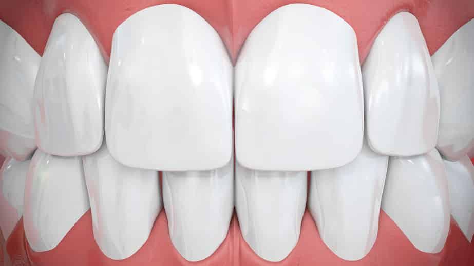 2本の前歯には神様の名前がついているという雑学