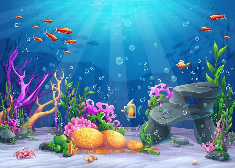 淡水魚と海水魚の水分補給に関する雑学