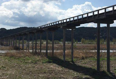 世界一長い木造歩道橋は静岡県にある蓬莱橋という雑学