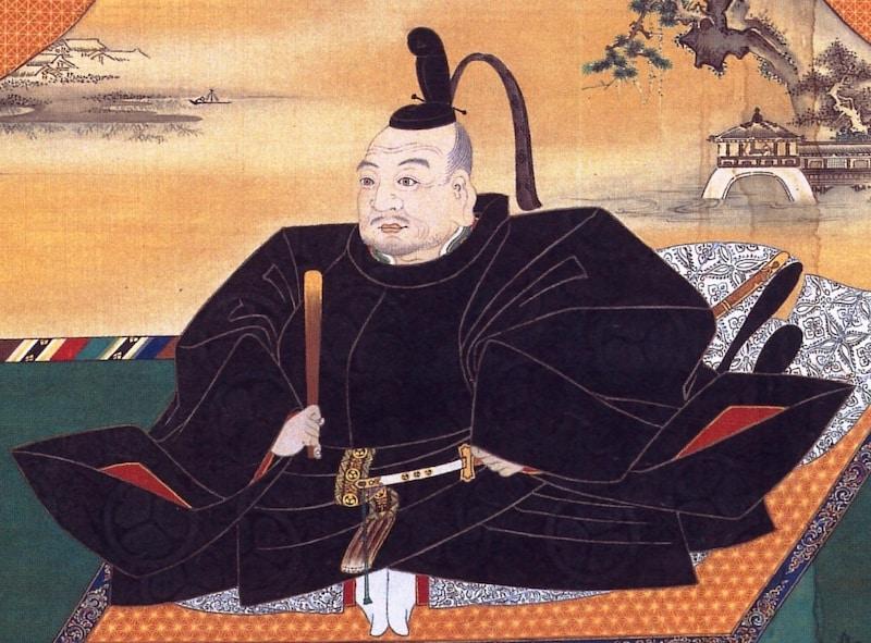 徳川家康は、実は相当な知識を有する名医だった?という雑学