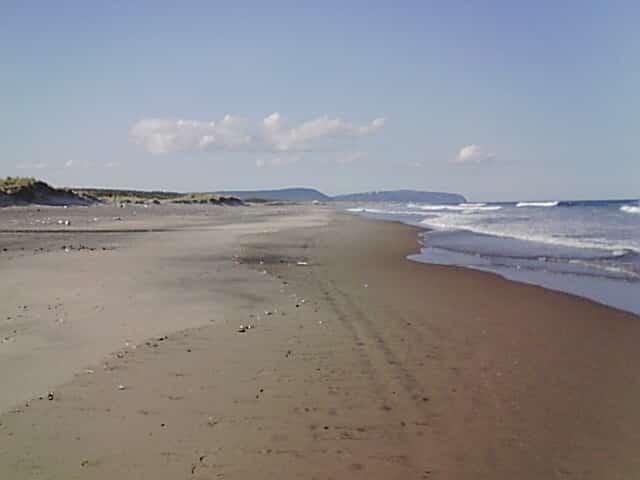 日本の砂丘は鳥取砂丘だけじゃないというトリビア