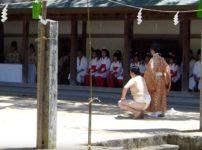 愛媛県大山祇神社では「一人相撲祭り」という、目に見えない精霊と相撲をとる祭りがあるという雑学