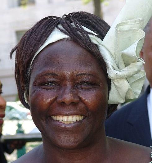 2005年より「MOTTAINAI」を世界共通語にしようという働きが始まる。についてのトリビア