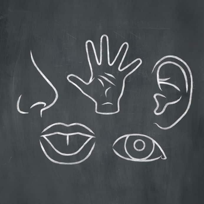 人間の五感の中で年をとっても衰えないのは何?に関する雑学