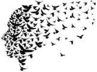 1964年の東京オリンピックの開会式では8千羽のハトが放たれたという雑学