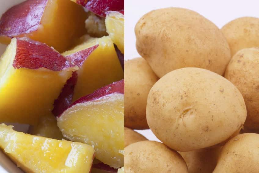 サツマイモは根っこでジャガイモは茎という雑学