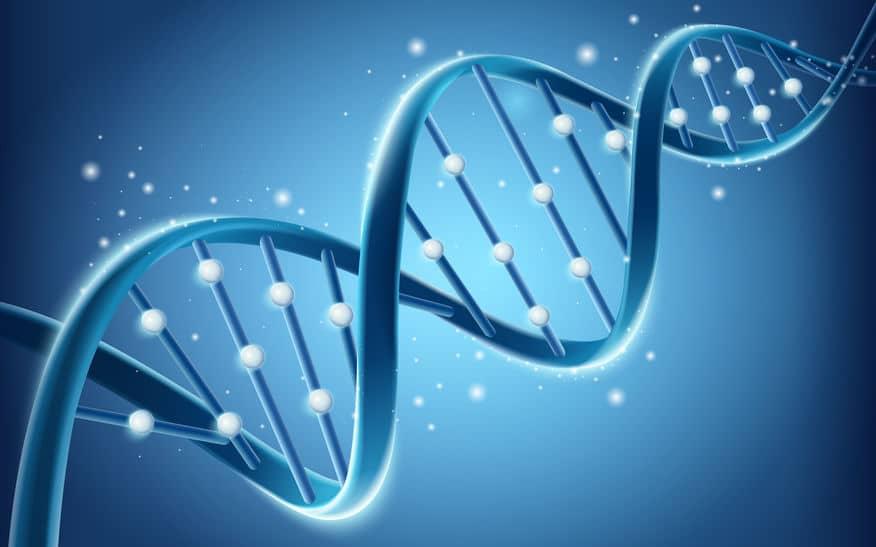 「サウザー遺伝子」の雑学まとめ