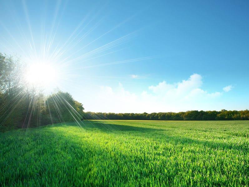 一円玉天気の意味は「快晴」についてのトリビア