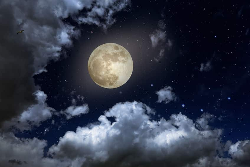 灼熱と極寒の繰り返し!月の昼と夜の温度差は300度についての雑学まとめ