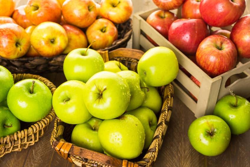 まさか…! りんごやなしも食べる部分は果実じゃないなんて!というトリビア