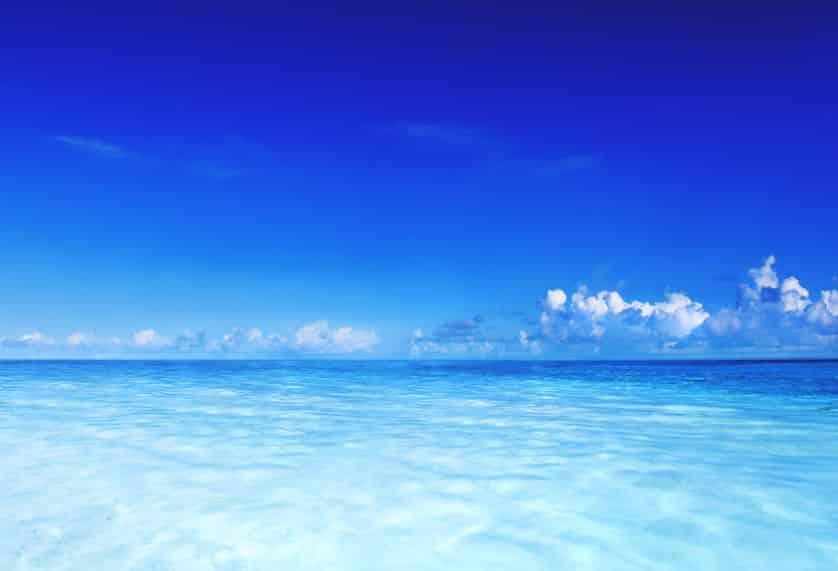 海の潮のにおいはなぜ臭い?実は都市ガスのにおいと同じ!【プランクトン】についての雑学まとめ