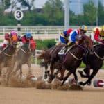 変わった名前の競走馬たちに関する雑学