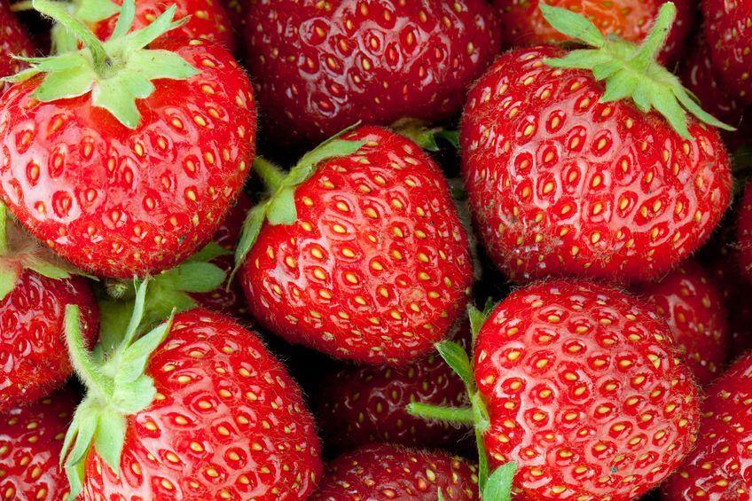 その名もズバリ、にせものの果実で「偽果」!というトリビア