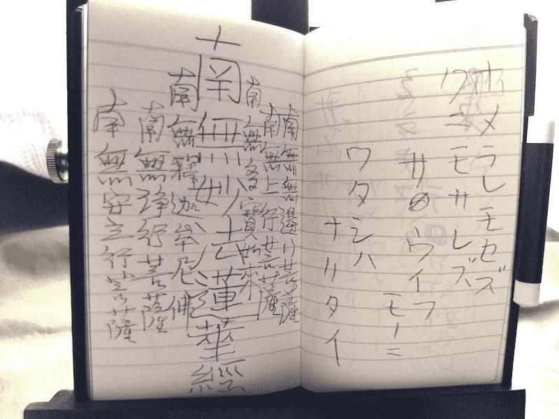 「雨ニモマケズ手帳」の「ホメラレモセズ」の部分