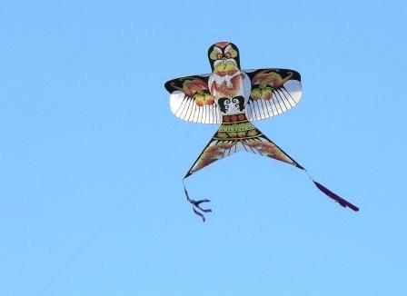 凧あげはもともと軍事利用目的だったというトリビア