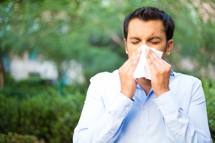 なぜ朝からアレルギー症状が出るのかというトリビア