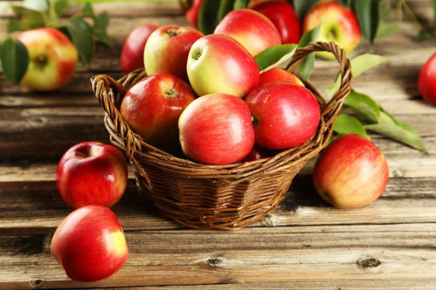 「りんご」の保存には注意が必要!上手な保存方法をご紹介というトリビア