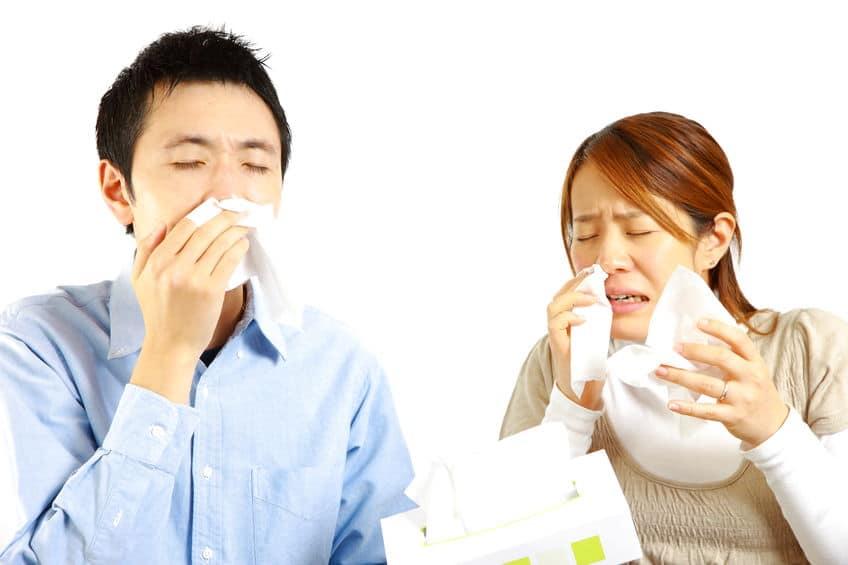 鼻水をすぐ止めるには?というトリビア