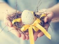 卵の雑学まとめ