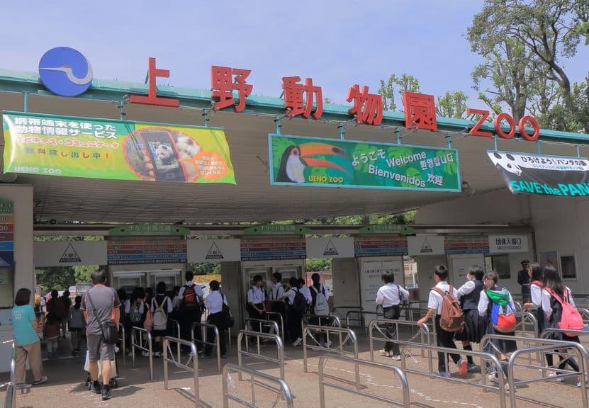 日本でも「アイアイ」が見られる動物園がある!というトリビア