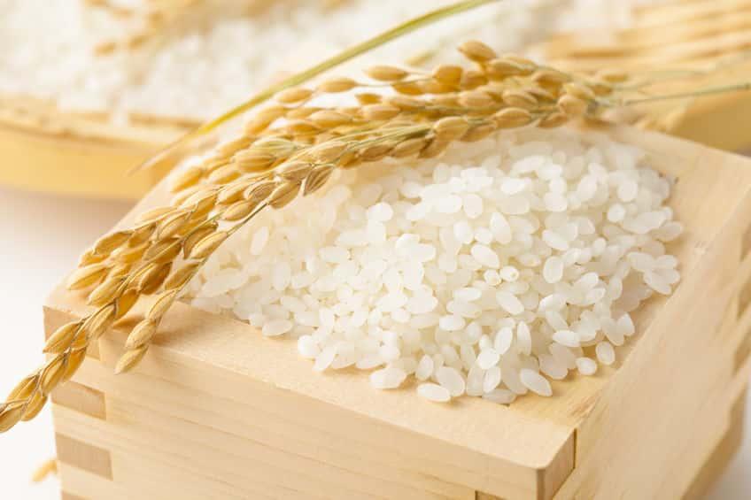 米の雑学まとめ