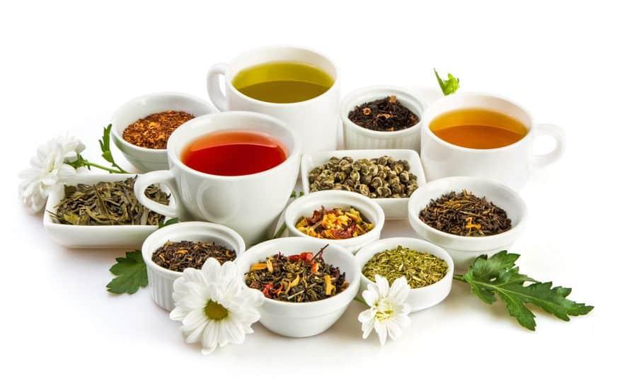 紅茶・緑茶の雑学まとめ