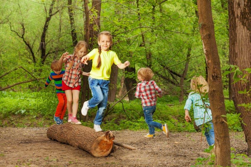 規模だけじゃなかった!林と森の違いは最終的に人のイメージという雑学まとめ