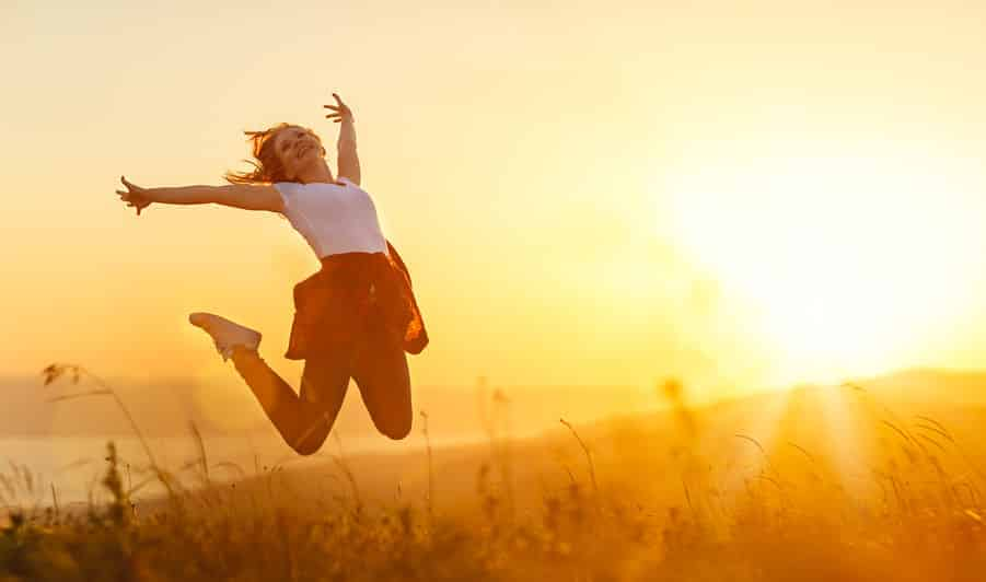 人間の幸せには3つの感情システムのバランスが大切というトリビア
