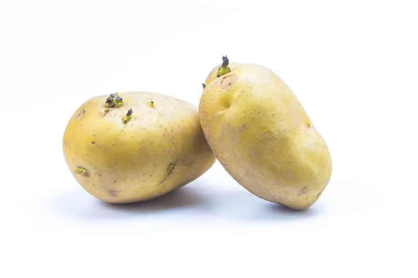 「じゃがいも」と「りんご」を一緒に保存するというトリビアとじゃがいもの発芽を抑えられる!?