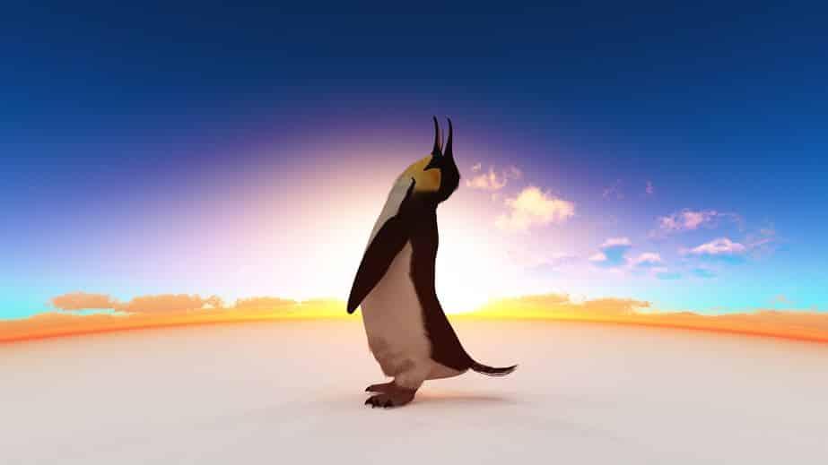 コウテイペンギンは、オスのほうが2ヶ月間絶食して卵をあたため続けるというトリビア