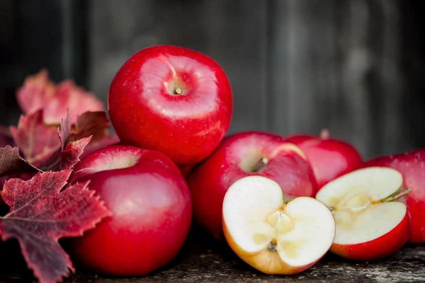 何種類知ってる?りんごの種類は世界で1万種以上あるという雑学まとめ