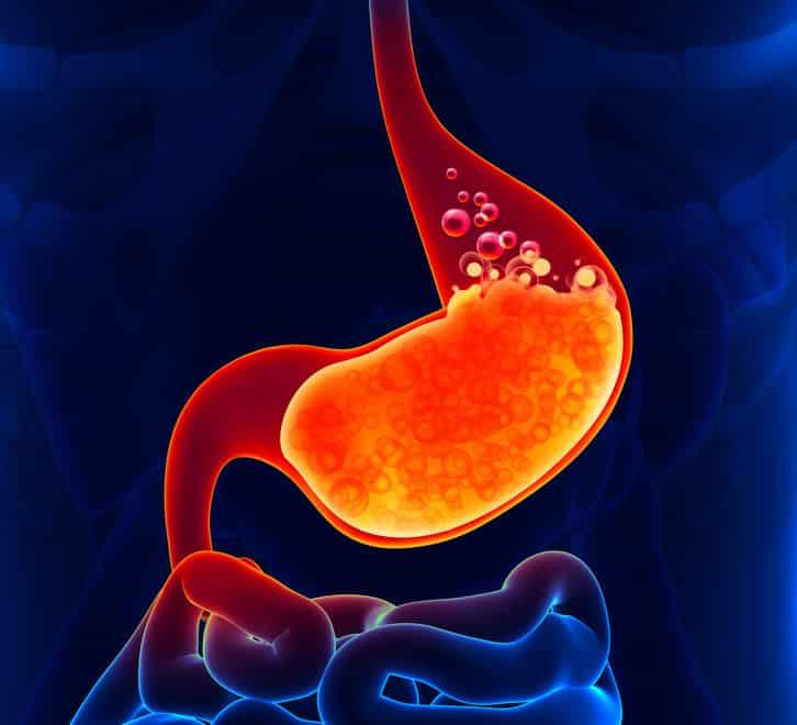 胃が胃液で溶けない理由に関する雑学