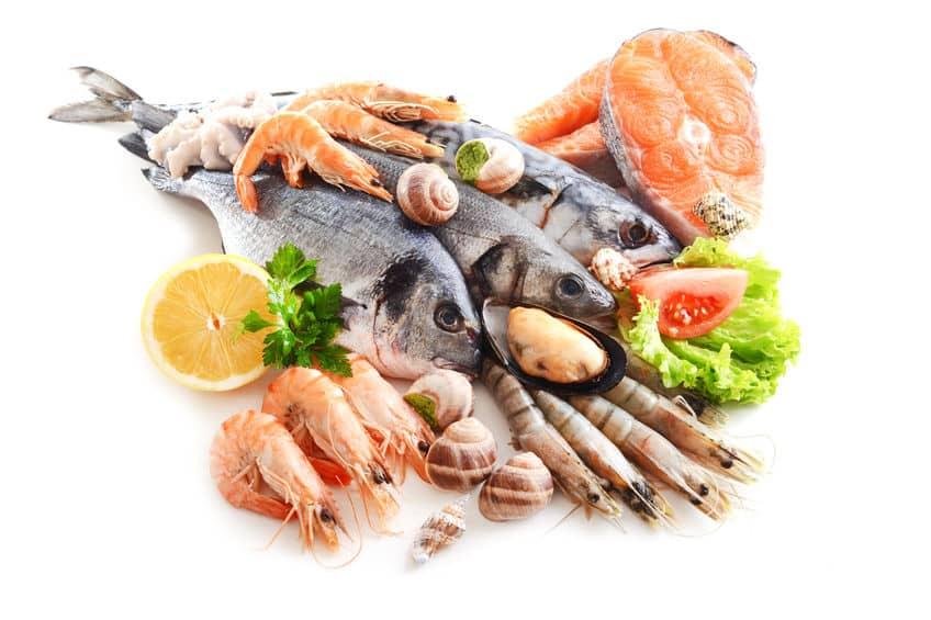 """明確な違いが…!""""魚介類""""と""""魚貝類""""の意味はどう違うかという雑学まとめ"""