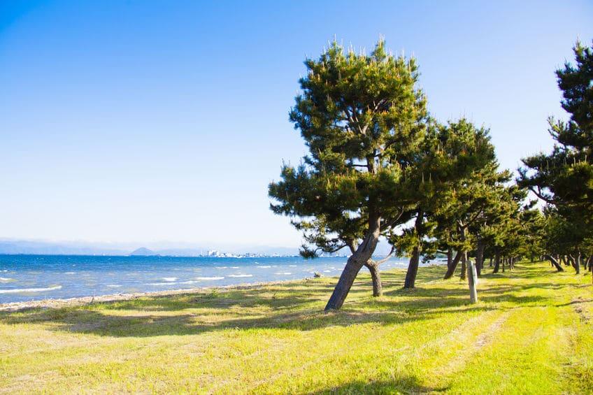 琵琶湖は世界で3番目に古い湖であるというトリビア