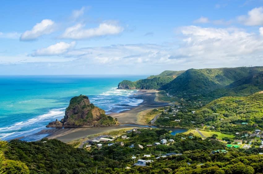 ニュージーランドには赤くて流線型の木の実が多いというトリビア