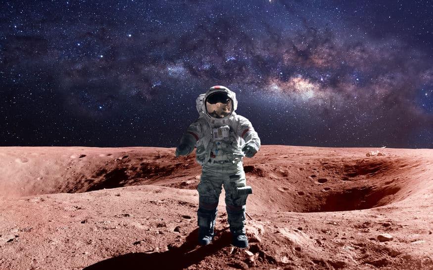 火星の地表付近で氷の層が発見されたというトリビア