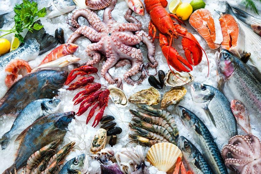 魚介類と魚貝類は意味が違うという雑学
