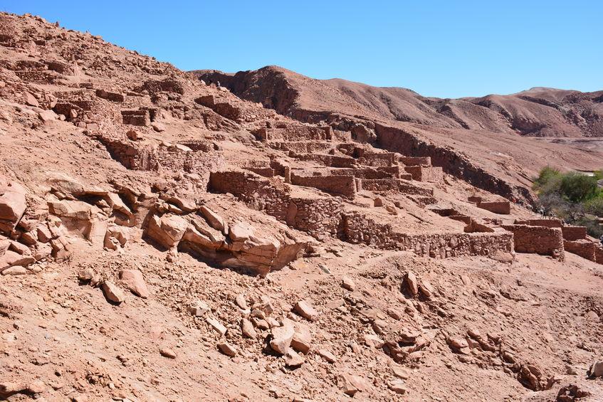 チリのアタカマ砂漠には、500年間一度も雨が降ったことのない地域があったという雑学