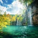 川や池の水は「煮沸」してから飲むべき、という雑学