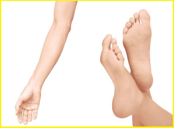 手首からヒジまでの長さと「足の大きさ」は同じという雑学