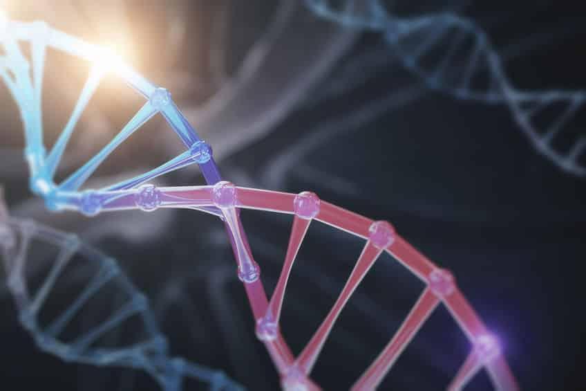 遺伝子の位置が関係しているというトリビア