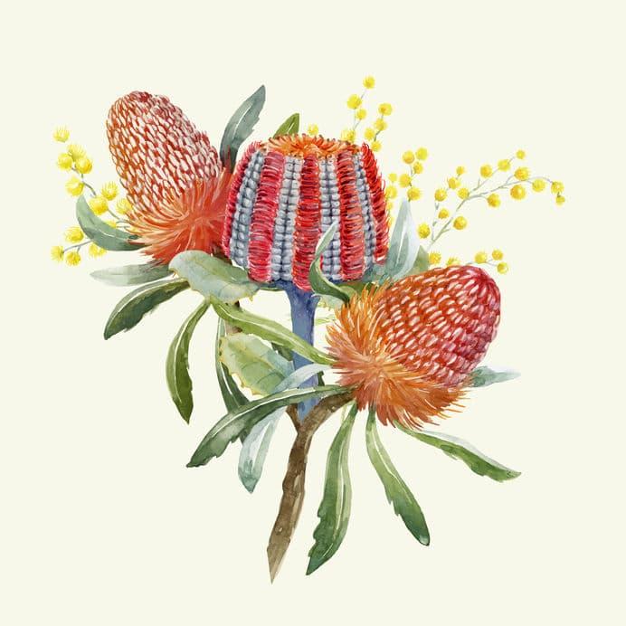 バンクシアの花言葉がとにかくカッコいい!というトリビア