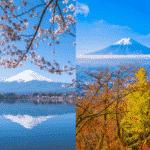 春分の日と秋分の日の意味は似ているようで正反対という雑学