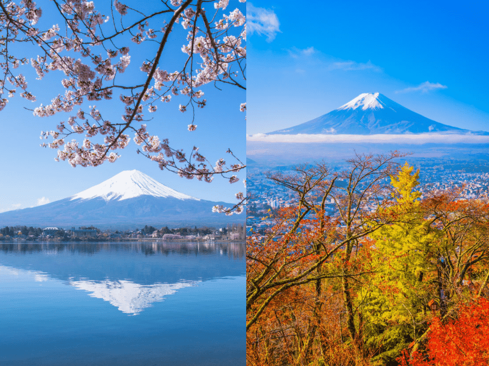 日 は と の 春分 春分(二十四節気)〜日本の行事・暦