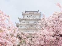 日本史の雑学まとめ