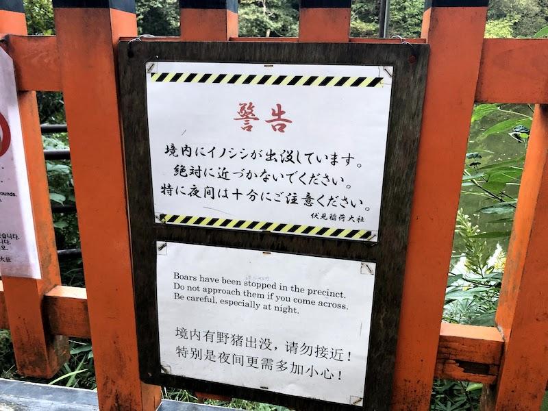伏見稲荷大社の千本鳥居のイノシシ注意警告