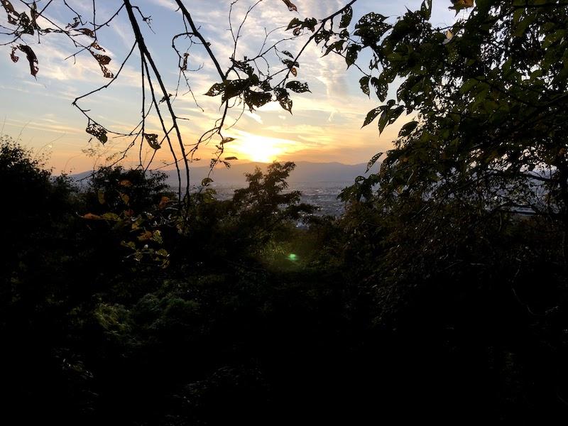 伏見稲荷大社の千本鳥居から見る京都の夕日