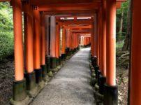男1人の京都日帰り旅行②伏見稲荷大社の山頂まで登ってみた